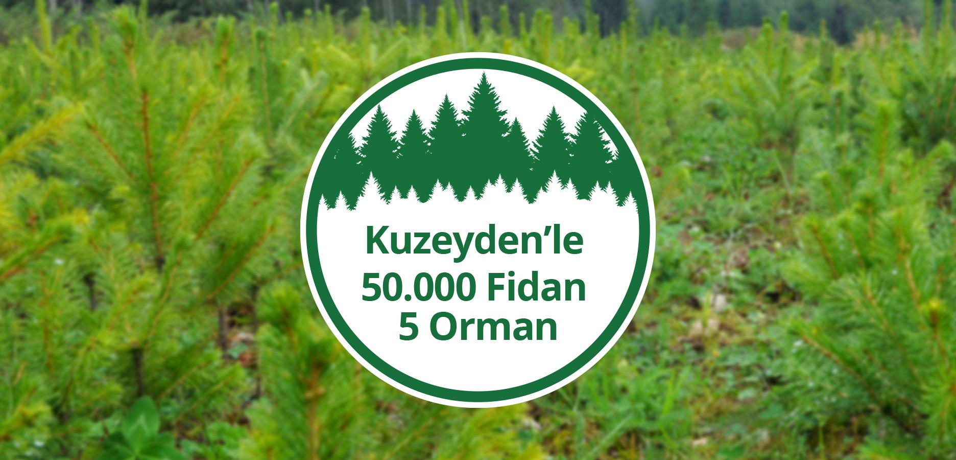 50.000 Saplings For 5 Kuzeyden Forests